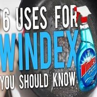 6 Uses for Windex